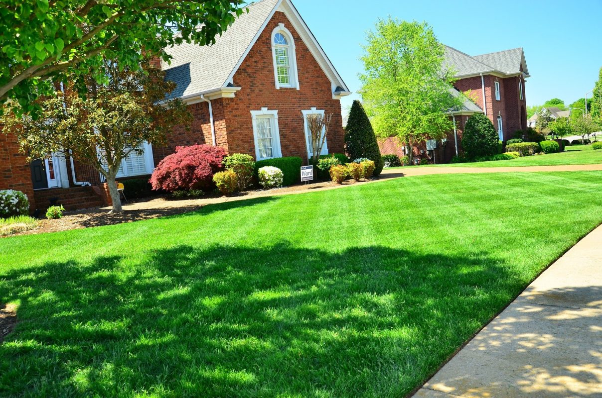 lawn care lawn edging